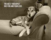 The Therapist - 8 x 10 Print