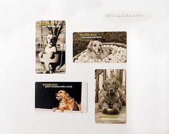 Golden Retriever, Magnets, Refrigerator, Inspirational, Lessons, Stocking Stuffer