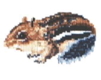Chipmunk counted cross-stitch chart