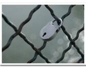 """Paris Photography - """"Love Lock, Pont des Arts"""" - 5x7 Fine Art Photo by Lesley Sico"""