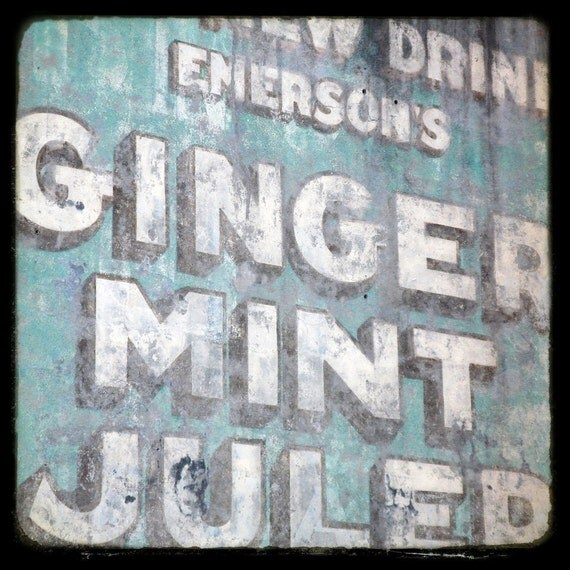 5x5 fine art photograph /// ginger mint julep /// new orleans photo by lesley sico