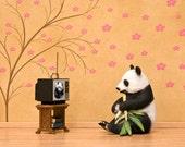 2 for 1 SALE - panda bear art print, animal diorama: Panda Planet
