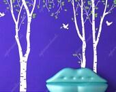 Vinyl Wall Decal - Birch Trees in the Nature Garden  -  Sticker Murals Art Nature Home Decor