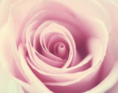 Flower photography rose picture baby girl nursery art pink wall art girl's bedroom wall decor floral print botanical art