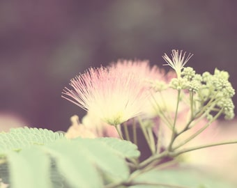 Pink flowers photography girls room pink green nursery art bedroom decor floral wall art nature photography