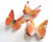 Autumn Rustic Fall Hair Accessories - Orange Halloween Butterfly Clips 3pcs