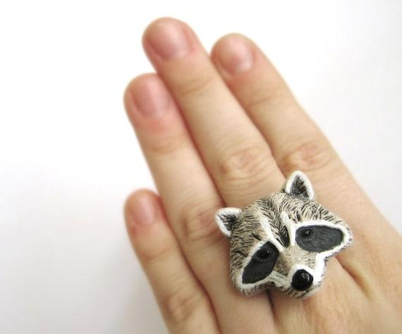Raccoon Ring