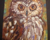 SAW-WHET OWL Orignal Art Greeting Card