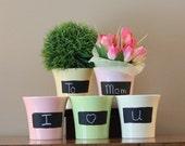 Chalk Pots- Pink