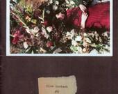 Ilse Content Vol 5 (Zine)