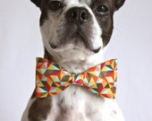 Retro Geometric Dog Bow-tie - Dog Accessories - Photo Prop - littlebluefeather