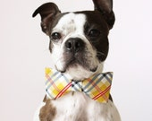 Yellow Plaid Dog Bow-tie - Handmade Dog Accessories - Regular and Large Sizes