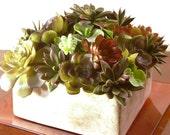 Faux Succulent Modern Planter, Artificial Succulents in White Square Planter
