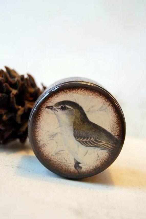 Winter Bird Powder Box, Wood Box, Wedding Ring Box, Wooden Box, Pill Box, Pill Boxes, Jewelry Box, Birds, Nature, Natural, Wildlife