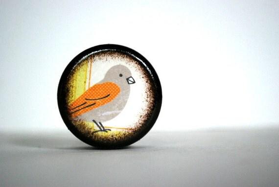Orange And Grey Bird Pill Box