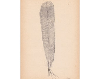 Feather I A5 Giclee print