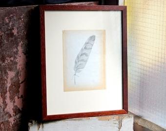 Feather II original illustration, framed