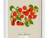 "Cherry tomatoes Kitchen Art Print  11""x15"" - archival fine art giclée print"