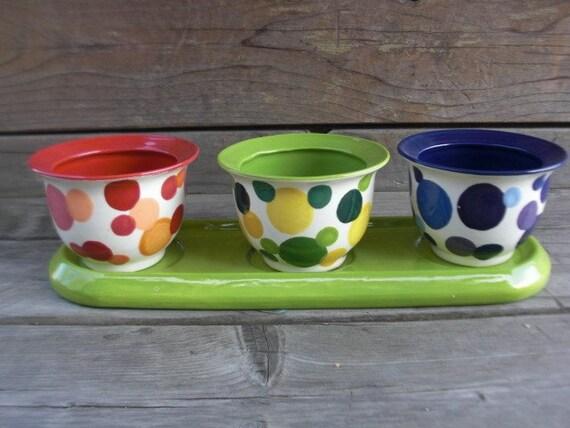 4 Piece Ceramic Herb Planter Flower Pot in Bright Rainbow Polka Dots RESERVED