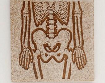 Skeleton set of tiles - coasters