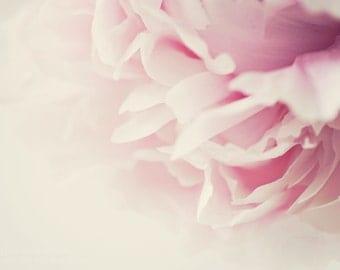 Peony ||| Flower Photograph | Soft Pink Peony Photograph | Bedroom Wall Art | Romantic Art