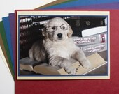 Professor Pup - Original Photo Greeting Card