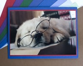 Study Hard - Original Photo Greeting Card