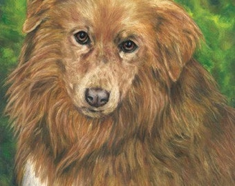 Oil Painting- Commissioned Pet Portrait 11 x 14 inch