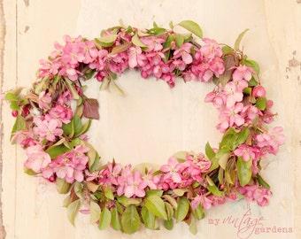 apple blossoms wreath-flower photography - flower photo- cottage garden photo (5 x 7 Original fine art photography prints) FREE Shipping