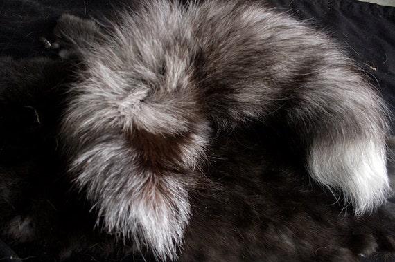 x1 Tanned Blue Frost Fox Tail  - Fur, Hide, Taxidermy, F02427 - Grade A