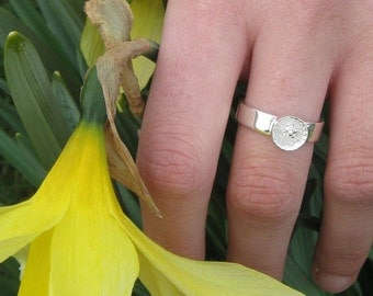 Small Tennessee Coneflower .925 Silver Ring