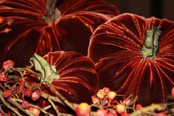 Pumpkin in Reddish Brown Plush  Velvet -  Large