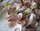 Shell Beads (95pcs)