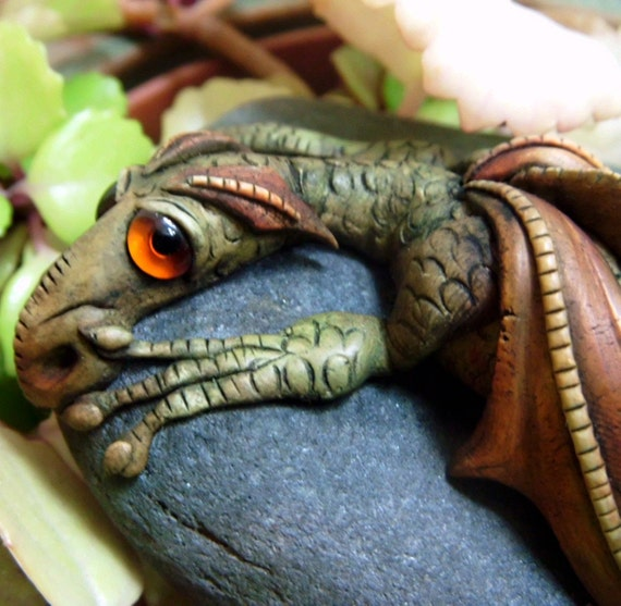 Dragon on a rock