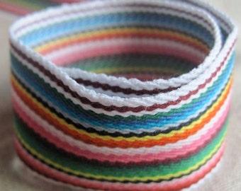 Color Spectrum striped belting
