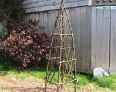 Rustic Garden Obelisk from Eco Friendly Bentwood Twigs