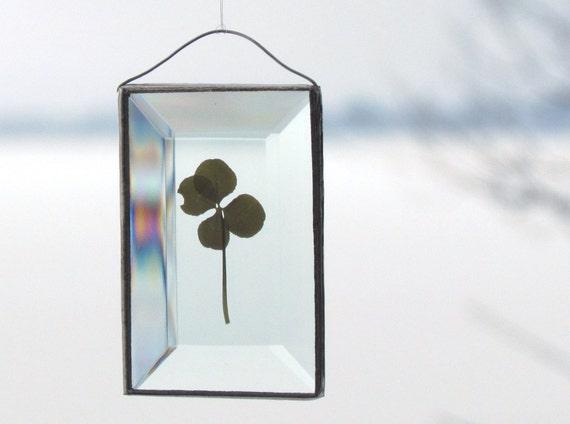 Genuine Four Leaf Clover as a Beveled Glass Ornament