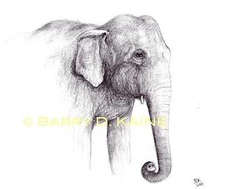 elephant portrait v.01 print