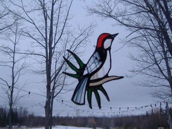 red-bellied woodpecker/pine needles, stained glass suncatcher