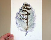 Red - Tailed Hawk Feather Study 290 - Nightly Study - Original Watercolor Dec 7th