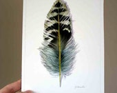 Northern Flicker Woodpecker Feather - Original Watercolor Feather Study - 306