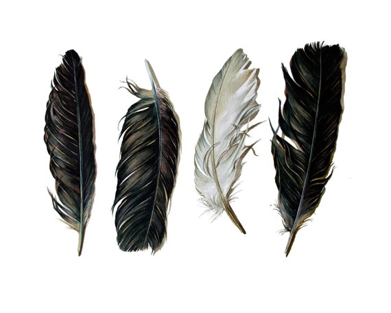 Spirit Feathers - Archival Print of the Watercolor Painting of Crow Feathers