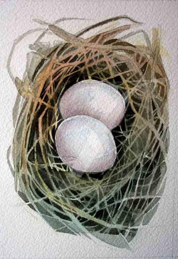 Dove Nest  - Original Watercolour - nightly study 259