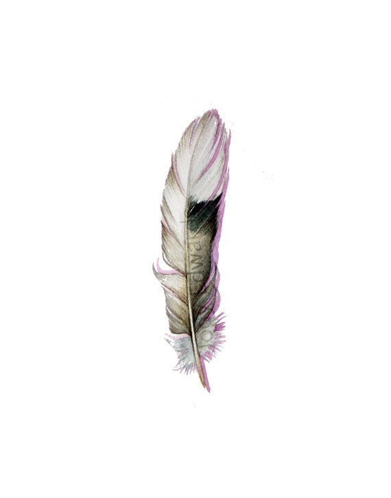 Dove Feather Study - Mourning Dove Feather - Original watercolor 391