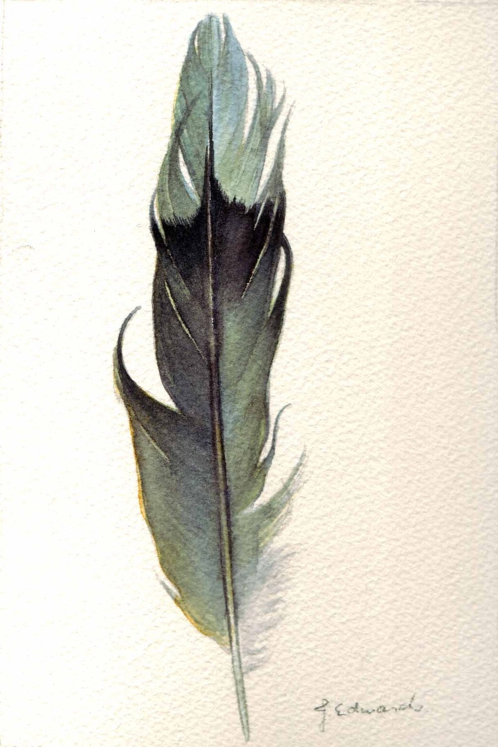 Watercolor Feather Feather 122 Mourning D...