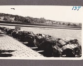 Vintage Black and White Photograph Scenic View 1930s vp024