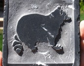 4x4 Raccoon Tile or Coaster - Black and White Marble - SRA