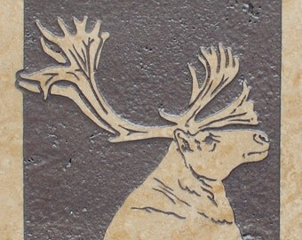 6x6 Caribou - Etched Travertine Stone Decorative Tile