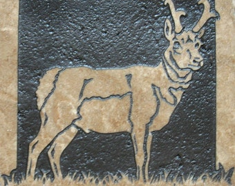 6x6 Prong Horned Antelope - Etched Travertine Stone Decorative Tile