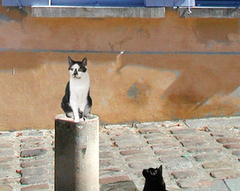 Cat Art Print, Paris Print, Montmartre, Whimsical Art, Giclee, Wall Art Prints, Deborah Julian